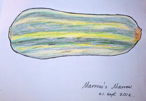 Drawing - marrow drawing